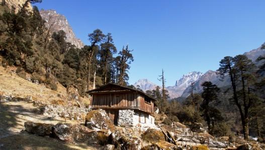 Kanchanjunga, Lumba Shumba & Makalu Trek