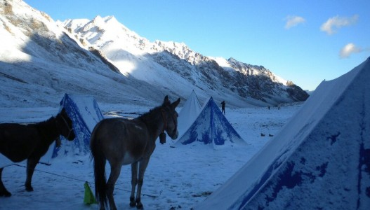Lamayuru to Stok Kangri Trek (Ladakh)